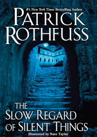 📚 The Slow Regard of Silent Things (The Kingkiller Chronicle Book 2.5) by Patrick Rothfuss (2014) ★★★☆☆